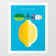 Fruit: Lemon Art Print