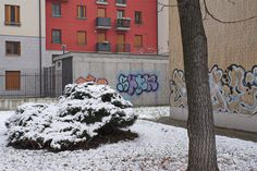 A series from my many walking in Milan. #psychogeography of visions.