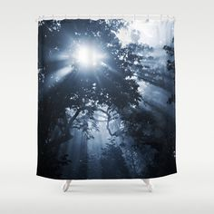 Blue Shower Curtain Etheral Trees Sunrays Nature by InLightImagery  -- Beautiful products like this can be custom made for you by our members at http://DigiColorCreations.com.
