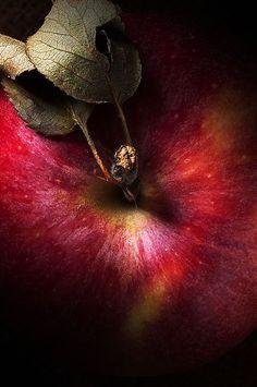 "Pomme ""Royal Gala""   ~   ""With an apple I will astonish Paris.""  Paul Cezanne         ~         Via @ elsadavern"