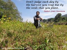 Judge by the seeds