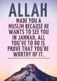 Unlike Christianity, in Islam you have to prove yourself, to earn favor. Unlike Christianity, in Islam you have to prove yourself, to earn favor. Best Islamic Quotes, Beautiful Islamic Quotes, Muslim Quotes, Islamic Inspirational Quotes, Religious Quotes, Beautiful Images, Beautiful Verses, Islamic Qoutes, Islamic Dua