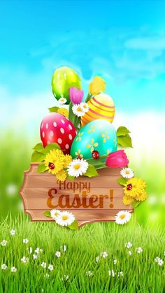 Easter Pictures, Holiday Pictures, Easter Bunny, Easter Eggs, Easter Quotes, Easter Sayings, Easter Backgrounds, Easter Wallpaper, Happy Easter Day