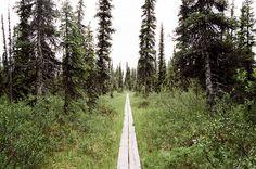 Alaska - Wes Sumner