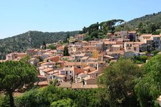 Picture of the village Bormes-les-Mimosas in Provence