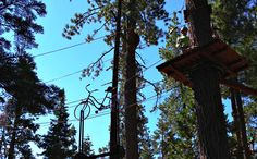 Treetop Adventure Park at Granlibakken Tahoe
