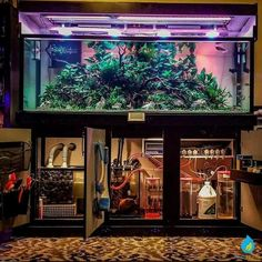 Aquarium as a container for life for ornamental fish and other aquatic biotas. It can also be a replica or imitation of the state of a waters environment. Another function of the aquarium is as an … Diy Aquarium Stand, Aquarium Sump, Home Aquarium, Aquarium Filter, Aquarium Design, Reef Aquarium, Saltwater Aquarium, Aquarium Fish Tank, Planted Aquarium