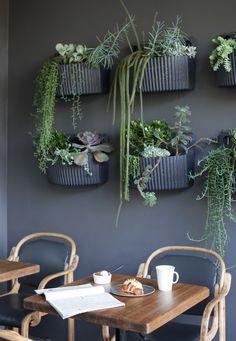 Wooly Pockets in Charcoal Grey @ Ramekin Restaurant