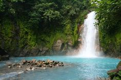 Rio Celeste, Costa Rica. The water really is that blue from all the minerals from the volcano!