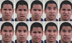 Image result for facial muscles during emotion