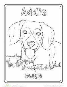 Worksheets: Beagle Coloring Page