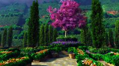 amazing gardens - Google Search