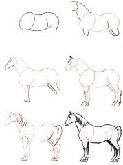 255 meilleures images du tableau dessin cheval drawings drawings of horses et horse art - Comment dessiner un poney ...