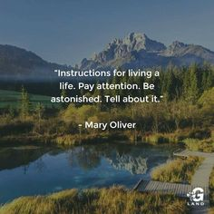 Instructions for living a life. Pay attention. Be astonished. Tell about it. #quote
