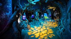 aquarium exhibits  | ... environments. Picture: Courtesy of Sydney Aquarium Source: Supplied