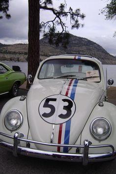 Herbie!!