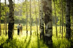 utah engagement wedding sundance summer