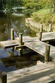 Japanese garden. Zig-zag bridge, against demons.