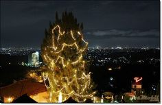 The Valley - Bandung