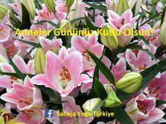 Anneler Gününüz Kutlu Olsun! Sahaja Yoga Türkiye http://www.sahajayoga-turkiye.org