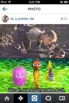 Carlee Whalen found this on instagram. I just have one question. Is the octopus a boy??
