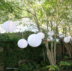 Outdoor White Lanterns in trees | Outdoor Party Ideas