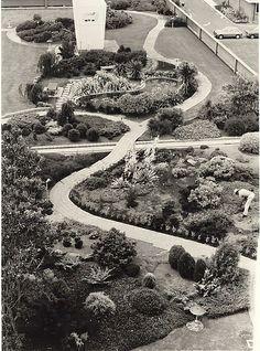 Tauranga Hospital 1964 roof garden