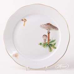 Herend fine china Dinner Plate – Herend Forest Mushroom – CHMP-OR design. 1 pc – Dinner Plate– diam 26 cm (10.25″D)20524-0-00 CHMP-OR The Mushroom CHMP-OR pattern is available in Tea, Coffee, Espresso and Dinner Setsas well. Dinnerware Ideas, Dinner Sets, Vintage China, Fine China, Dinner Plates, Espresso, Stuffed Mushrooms, Dishes, Coffee