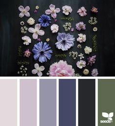 Contrasting beige pink with deep muted purple, green against black background
