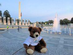 Der Urlaubär von ferienwohnungen.de in den USA in Washington ... #urlaubär #usa #washington