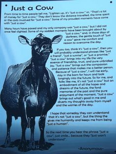 Steve Borland of Rapid Bay Jerseys shared this photo with us of a very neat Chri… – Monkey Stuffed Animal Farm Girl Quotes, Cow Quotes, Country Girl Quotes, Horse Quotes, Animal Quotes, Livestock Judging, Showing Livestock, Farm Jokes, Cattle Farming