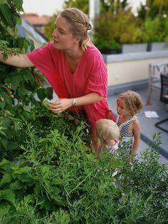 Meine Terrasse im August plus mein liebstes Teerezept für müde SommermorgenZucchinirezept, Zucchini-Tomatensoße, schnelle Pastasoße