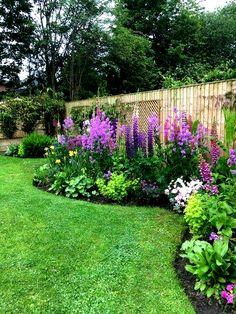 Every beautiful cottage garden has common principles that make them a success. Learn about the fundamentals you need to create your very own cottage garden. Amazing Gardens, Beautiful Gardens, Flower Garden Design, Garden Yard Ideas, Beautiful Flowers Garden, Garden Cottage, Front Yard Landscaping, Landscaping Ideas, Outdoor Landscaping