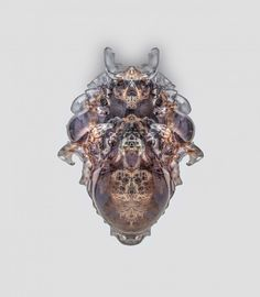 Neri Oxman Photography by Yoram Reshef  vespers-neri-oxman-3d-printed-death-masks-mediated-matter-group_dezeen_2364_col_20