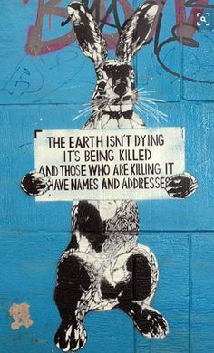 """The Earth isn't dying, it's being killed, and those who are killing it have names and addresses."" Street art in Poland inspired by a quote attributed to singer/activist Utah Phillips. As fossil fuel users, we are all responsible for global warming, but t Save Our Earth, Save The Planet, Illustration, Global Warming, Urban Art, Graphic, Mother Earth, Climate Change, Les Oeuvres"