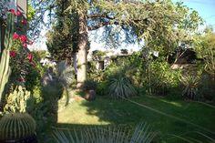 marseille jardin | Création de jardins à Marseille et sa région : conception et ...