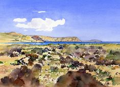 A watercolour sketch of the beach, El Playazo de Rodalquilar, with marine plants in the foreground and looking along the coastline of the Parque Natural de Cabo de Gata. These paintings offer affor…