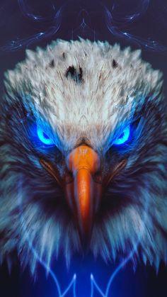 Eagl e iPhone Wallpaper Wild Animal Wallpaper, Eagle Wallpaper, Lion Wallpaper, Skull Wallpaper, Galaxy Wallpaper, Eagle Images, Eagle Pictures, Lion Images, Mystical Animals