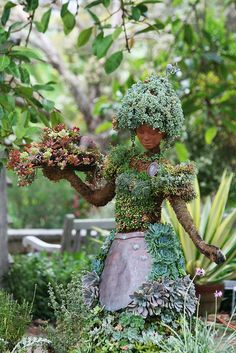 Gorgeous topiary.