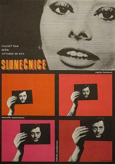 """I Girasoli"" (1970) Director: Vittorio De Sica."