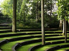 Swarthmore College Amphitheater - great place to exercise a hyper dog!