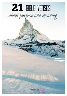 21 Scriptures About Your Purpose in Life – Pink Fortitude, LLC - Modern Bible Verse Memorization, Encouraging Bible Verses, Daily Scripture, Favorite Bible Verses, Scriptures, Inspirational Bible Quotes, Inspiring Quotes, Royal Priesthood, My Purpose In Life