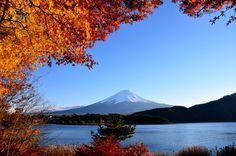 「富士山 with 河口湖の紅葉と青空」 Mt.Fuji with Autumn leaves in Lake Kawaguchiko and Blue Sky / Yamanashi,Japan  #カコソラ #青空 #bluesky #富士山 #富士山の日 #富士山部 #worldheritage #絶景 #mtfuji #kawaguchiko #autumnleaves #koyo #momiji