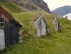 Peat roof
