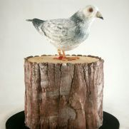 A place for people who love cake decorating. Bird Cakes, Love Cake, Cake Decorating