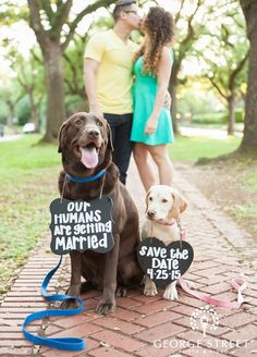 """No bones about it! Incorporating your pets into your save-the-date is a surefire way to have everyone saying """"Aww""""."""