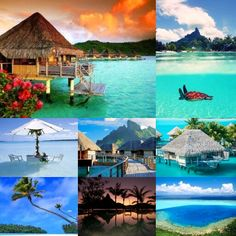 Honeymoon to Bora Bora