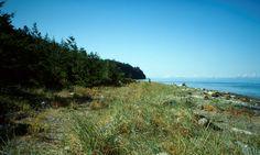 Fillongley Provincial Park, Denman Island