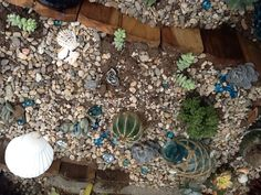 My Succulent Garden In San Diego, Just Planted 4/2013 #beach Decor #