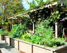 edible garden design back to the earth pinterest edible garden
